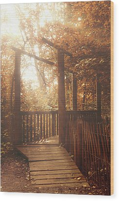 Pathway Wood Print by Wim Lanclus