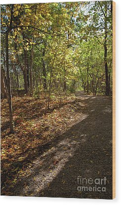 Wood Print featuring the photograph Pathways In Fall by Iris Greenwell