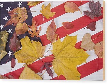 Patriotic Autumn Colors Wood Print by James BO  Insogna