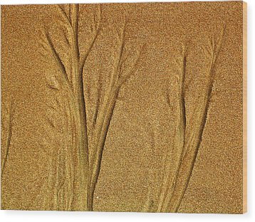 Patterns In The Sand Wood Print by Elizabeth Hoskinson