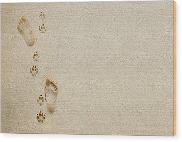 Paw And Footprint 1 Wood Print by Brandon Tabiolo - Printscapes