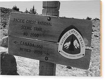 Pct Scenic Trail Wood Print