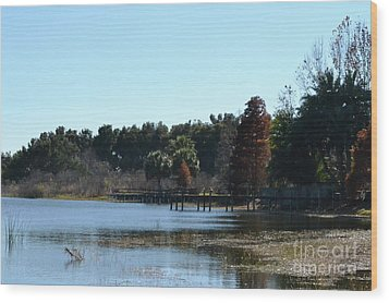 Wood Print featuring the photograph Peace by Carol  Bradley