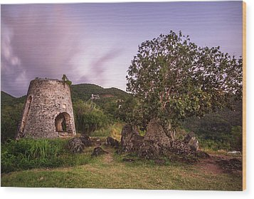 Wood Print featuring the photograph Peace Hill Ruins by Adam Romanowicz