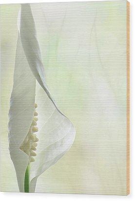 Peace Wood Print by John Poon