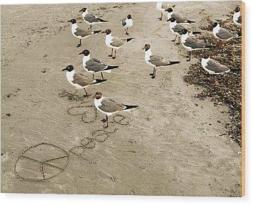 Peace On The Beach Wood Print by Marilyn Hunt