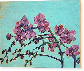 Peace Orchids Wood Print by Sheila Tajima