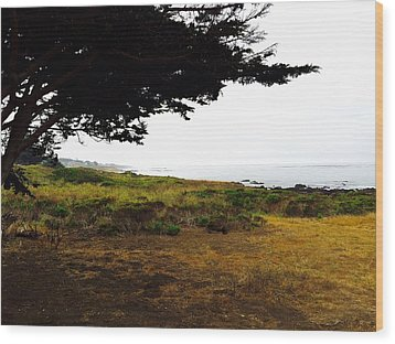 Peaceful Coast Wood Print by Russell Keating