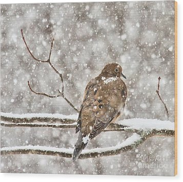 Wood Print featuring the photograph Peaceful by Debbie Stahre