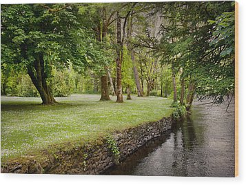 Peaceful Ireland Landscape Wood Print by Cheryl Davis
