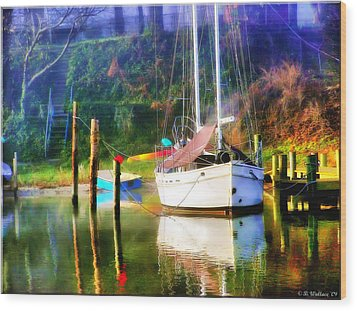 Wood Print featuring the photograph Peaceful Morning In The Cove by Brian Wallace