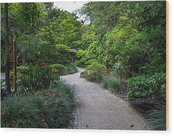 Peaceful Pathway Wood Print
