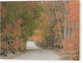 Wood Print featuring the photograph Peaceful Sierra Morning by Sandra Bronstein