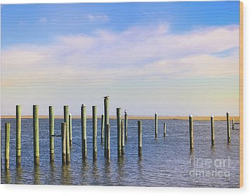 Wood Print featuring the photograph Peaceful Tranquility by Colleen Kammerer