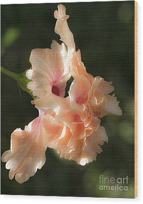 Peach Bliss Wood Print