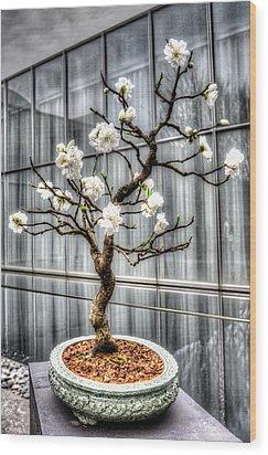 Peach Bonsai Tree Wood Print