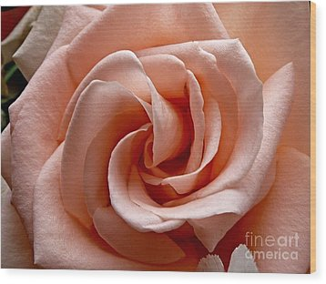 Peach-colored Rose Wood Print