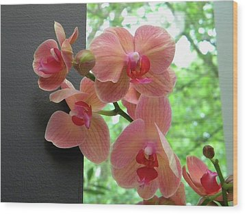 Wood Print featuring the photograph Peach Orchids by Manuela Constantin