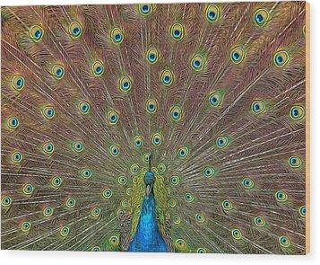 Peacock Fanfare Wood Print by Diane Alexander