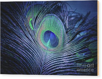 Wood Print featuring the photograph Peacock Feather Blush by Sharon Mau