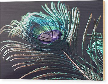 Peacock Feather In Sun Light Wood Print