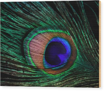 Peacock Feather Wood Print by June Marie Sobrito