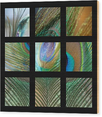 Peacock Feather Mosaic Wood Print by Lisa Knechtel