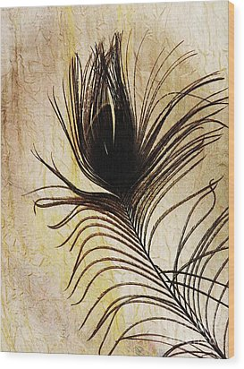 Peacock Feather Silhouette Wood Print by Sarah Loft