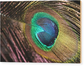 Wood Print featuring the photograph Peacock Feather by Terri Thompson