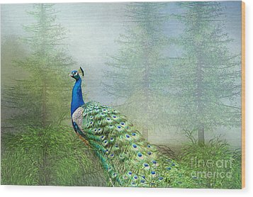 Wood Print featuring the photograph Peacock In The Forest by Bonnie Barry