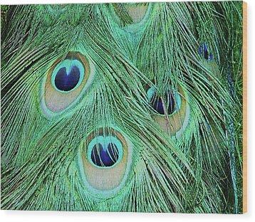 Peacock Tail Wood Print by Martina Fagan