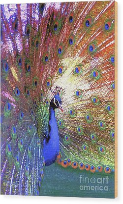 Peacock Wonder, Colorful Art Wood Print by Jane Small