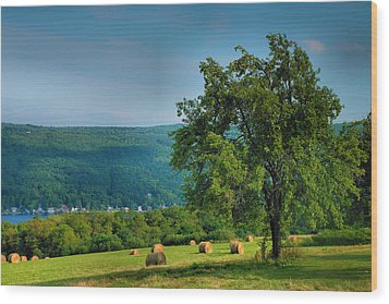 Pear Tree And Hayfield Wood Print by Steven Ainsworth