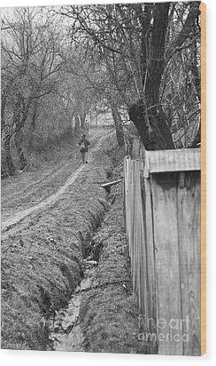 Peasant Man On A Muddy Road Wood Print by Gabriela Insuratelu