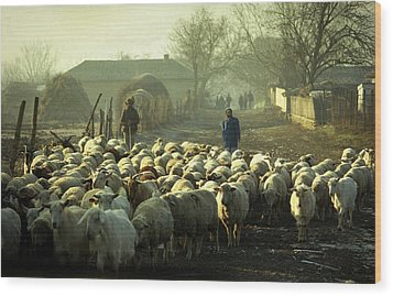 Peasants And Herd On The Village Path Wood Print