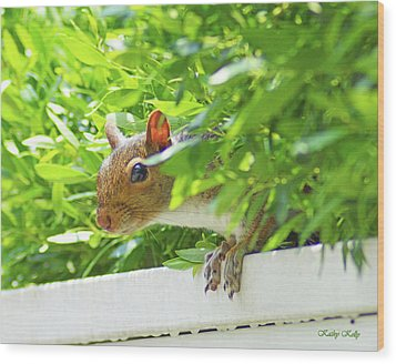 Peek-a-boo Gray Squirrel Wood Print