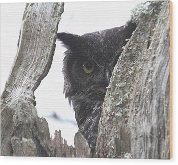 Peek-a-boo Wood Print by Angie Vogel