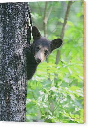 Peek-a-boo Wood Print by Gerry Sibell