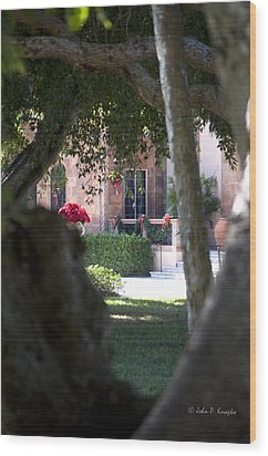 Wood Print featuring the photograph Peeking At The Mansion by John Knapko