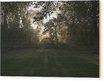 Peeking Through Wood Print by Annette Berglund