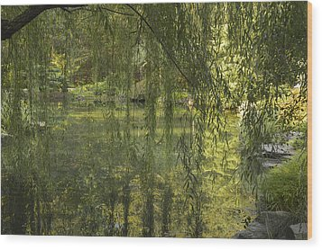 Peeking Through The Willows Wood Print by Linda Geiger