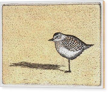 Peep Wood Print by Charles Harden