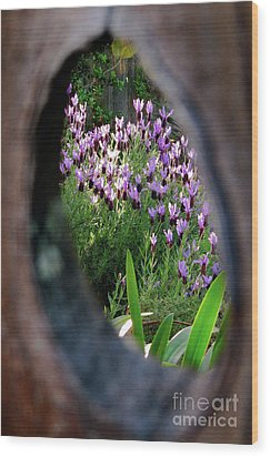 Peephole Garden Wood Print by CML Brown