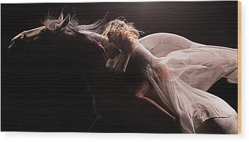 Wood Print featuring the photograph Pegasus Crop by Dario Infini