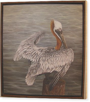 Pelican 3 Brown Wood Print by Judy Merrell