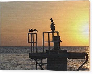 Pelican And Friend Wood Print by Rebecca Cozart