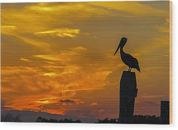Pelican At Silver Lake Sunset Ocracoke Island Wood Print by Greg Reed