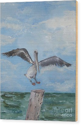 Wood Print featuring the painting Pelican by Sibby S