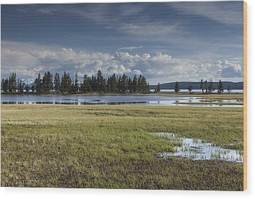 Pelican Creek Wood Print