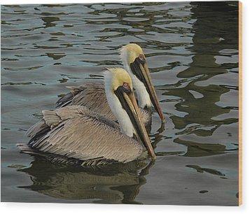 Pelican Duo Wood Print by Jean Noren